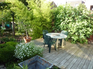zonneterras Inblauw bed and breakfast - zomer