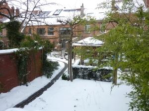 Winter garden view