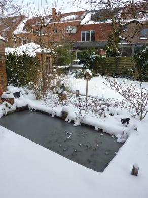 Inblauw Bed & Breakfast winter garden view with frozen pond